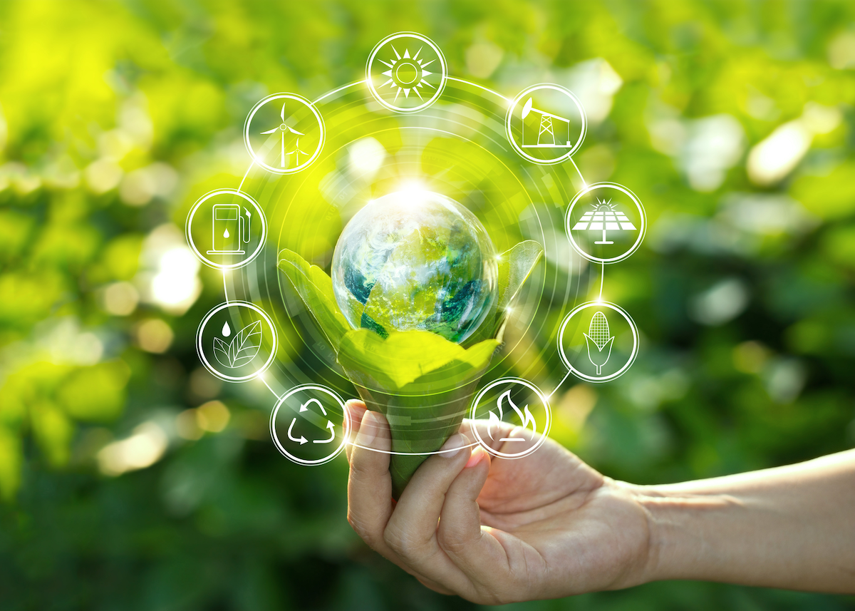 Sustainability & The Supply Chain - cover
